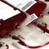 La FALGBT celebra la resolución que permite donación de sangre sin discriminación